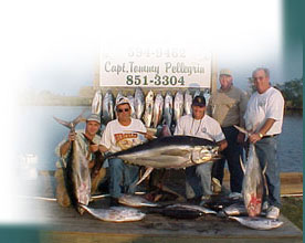 Typical Offshore Catch